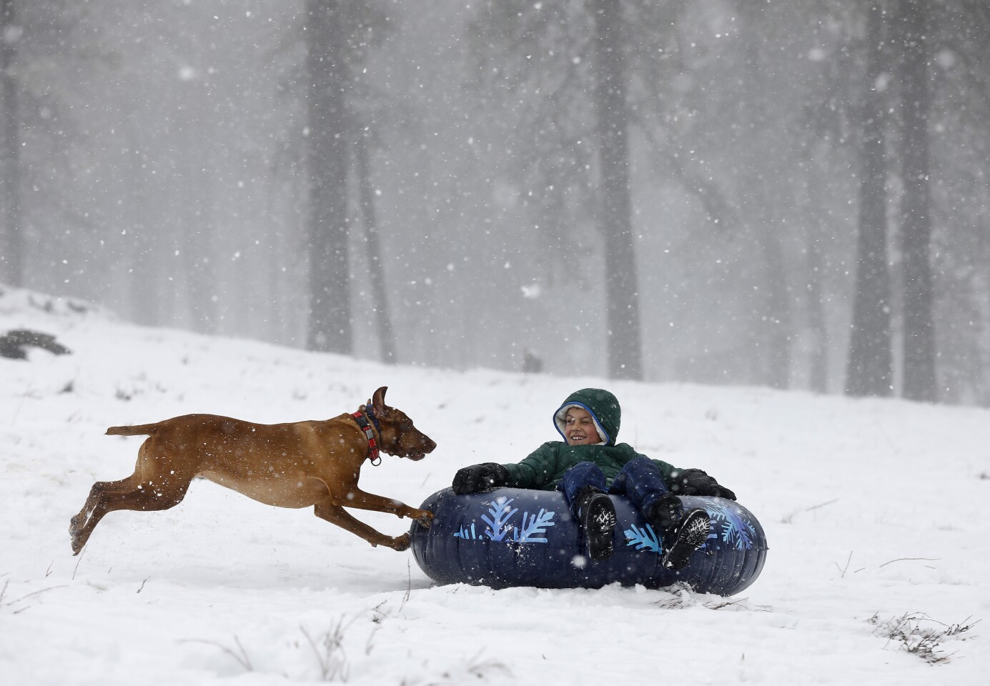 Grayson Baudek tubes down a hill with his dog Delta in Mt. Laguna as it gets a fresh coat of snow on the first day of Spring on March 19, 2020.