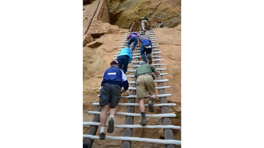 Tourist climb the tall ladder at Balcony House, a cliff dwelling in Colorado's Mesa Verde National Park.