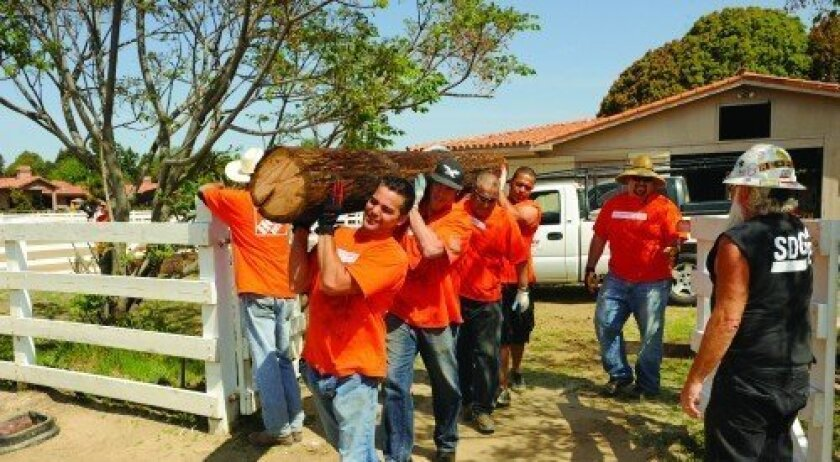 Home Depot volunteers carry a telephone pole to build a shelter structure for Pegasus Rising. Photo: Jon Clark