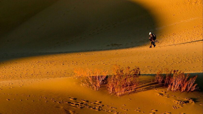 Mesquite Flat Sand Dunes in Death Valley National Park. Temps are expected to reach 128 this week.