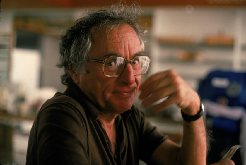 A 1983 portrait of screenwriter and director Walter Bernstein.