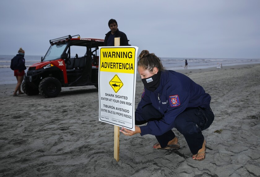 Encinitas lifeguards put up advisory signs south of Moonlight Beach after a body boarder reported an encounter with a shark according to officials on April 29, 2020. Officials don't believe the person was bit, and will have the advisory up for 24 hours.