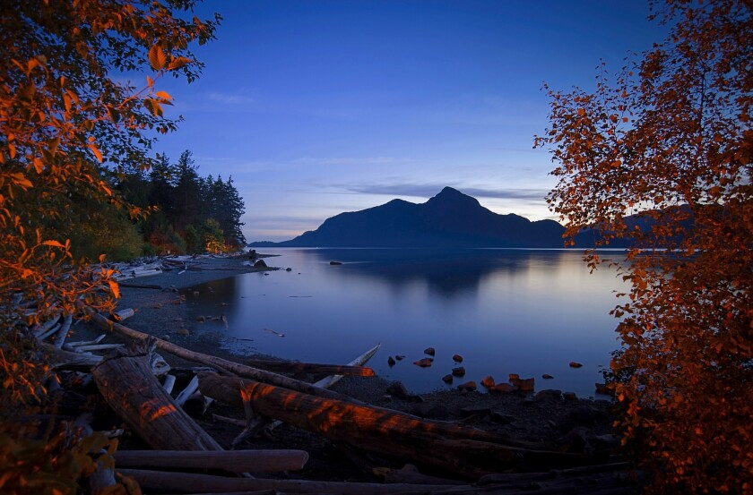 Porteau Cove is a popular destination for scuba divers, who can explore a shipwreck and artificial reefs hidden within the Howe Sound.