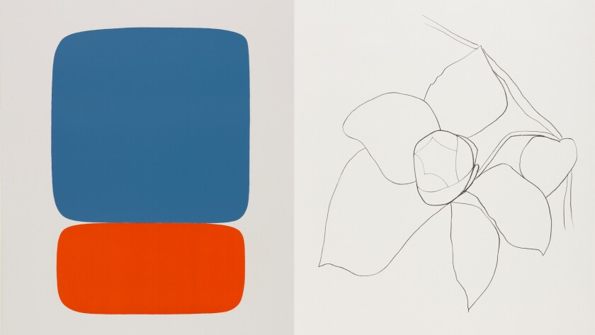 The Essential Eye Of Ellsworth Kelly In Line Color At