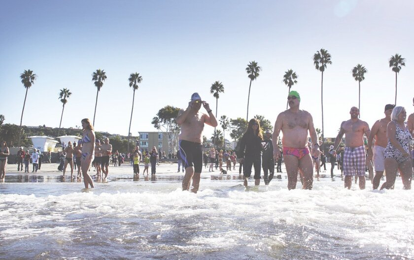 A scene from last year's PLUNGE! File