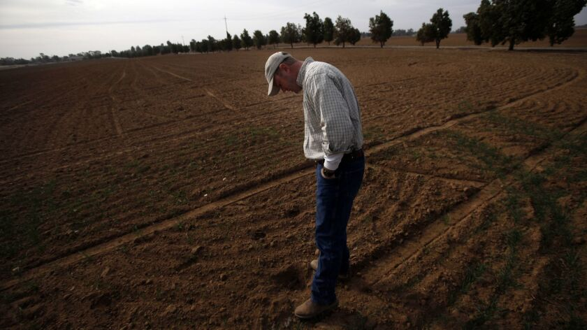 A farmer stands a field on his third-generation family farm in Clovis, Calif. on Jan. 24, 2014.