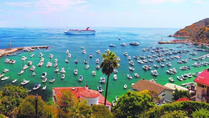 Summer days find lots of boats moored in Avalon's harbor.