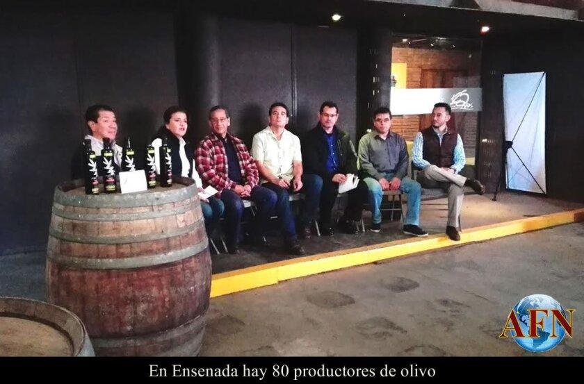 En Ensenada hay 80 productores de olivo