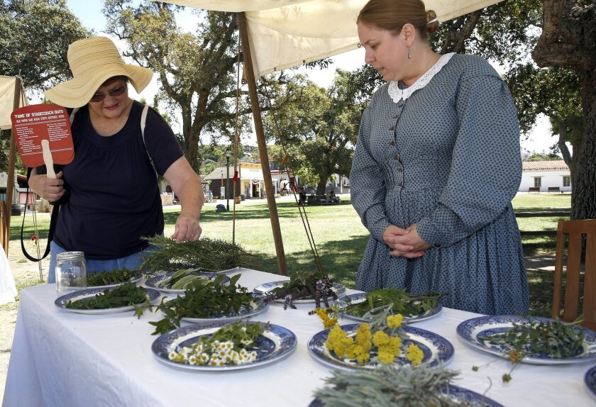 Park interpreter Michelle Magnuson, right, shows Pat Cramer some of the herbs available for food and other uses during 1860s San Diego.