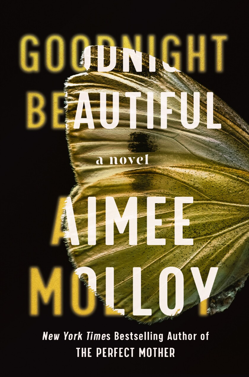 """This cover image released by Harper shows """"Goodnight Beautiful,"""" a novel by Aimee Molloy. (Harper via AP)"""