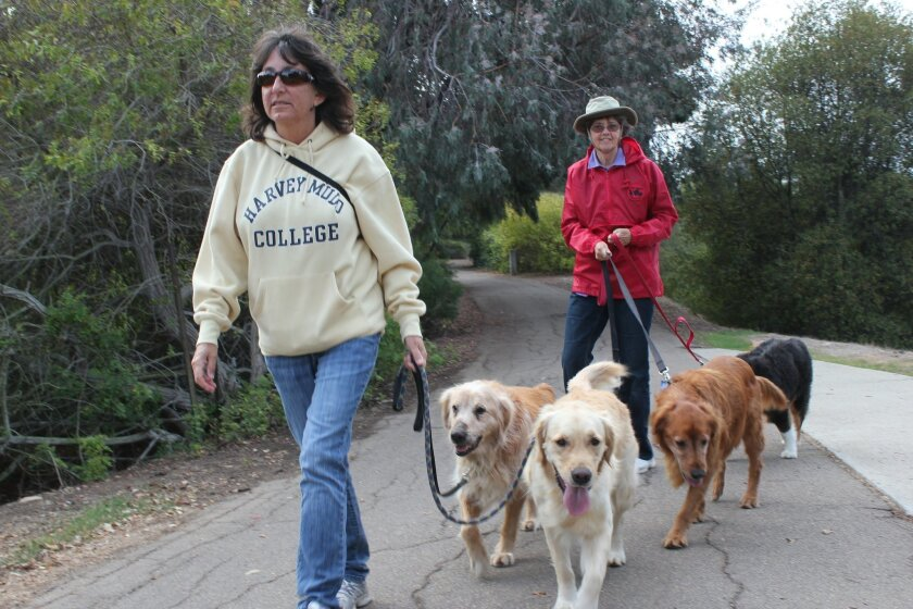 The Fay Avenue Bike Path is a popular place for dogs and their owners to get fresh air and exercise. Pat Sherman photos