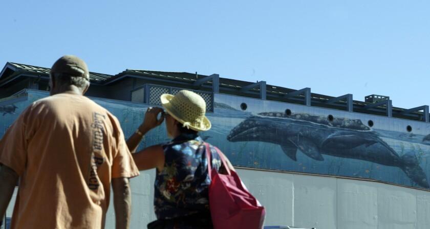 Wyland's Whaling Wall Laguna Beach 2005 (2)