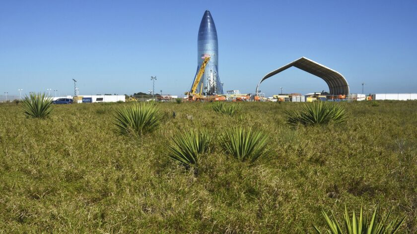 SpaceX's Starship hopper prototype stands at the Boca Chica Beach site in Texas on Jan. 12.
