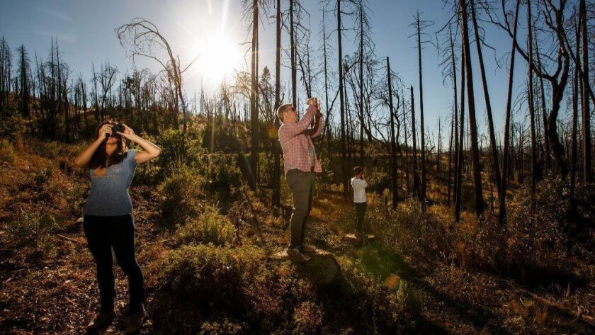 Leigh Madeira, left, and Zach Knight, center, two founders of Blue Forest Conservation, tour an area near Yosemite National Park scorched by the 2013 Rim Fire.