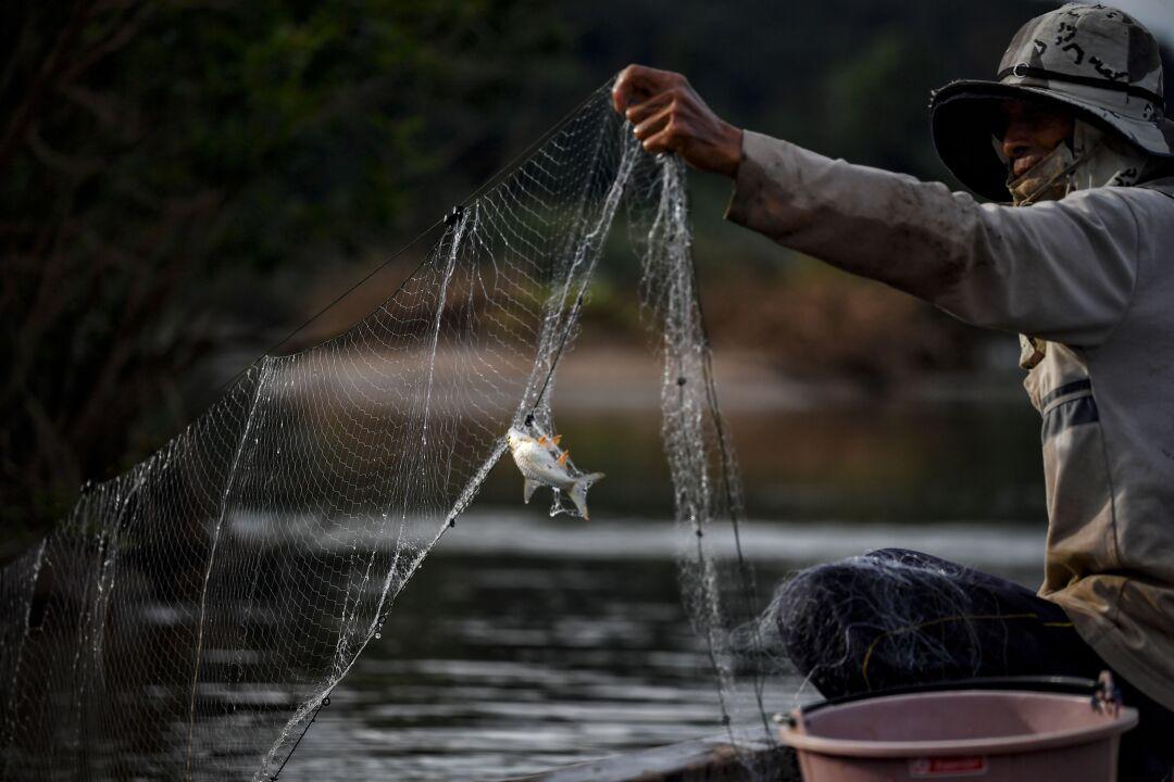 A fisherman checks his net along the Mekong River