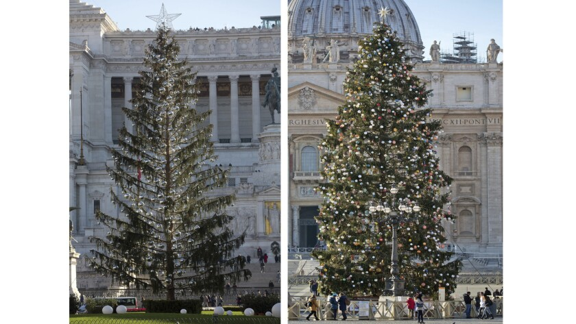 This combo picture taken Tuesday Dec.19, 2017 shows at left Rome's official Christmas tree placed in