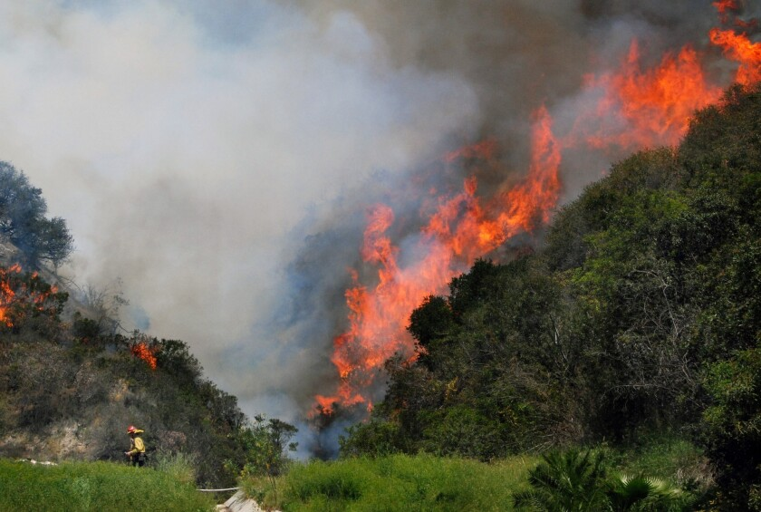 Chief warns of bad fire season after Monrovia brush fire