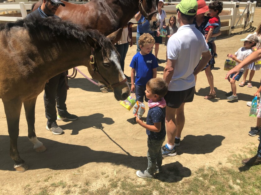 The children enjoying learning about the care of horses - Ella and Ricky - from Fairbanks Riding Club.