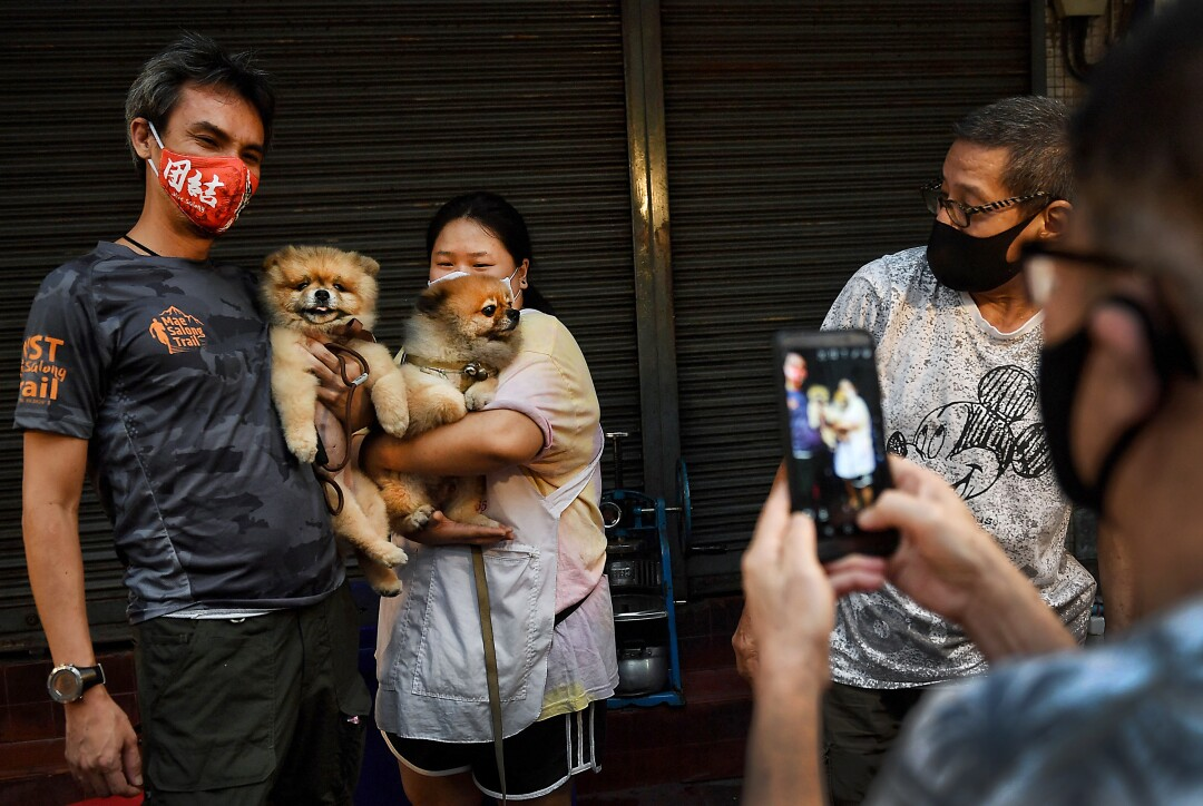 THAILAND: A street food vendor (C) and a customer (L) in face masks, as a preventive measure against the spread of the COVID-19 coronavirus, have their photo taken with their dogs in Chinatown in Bangkok on April 17, 2020.
