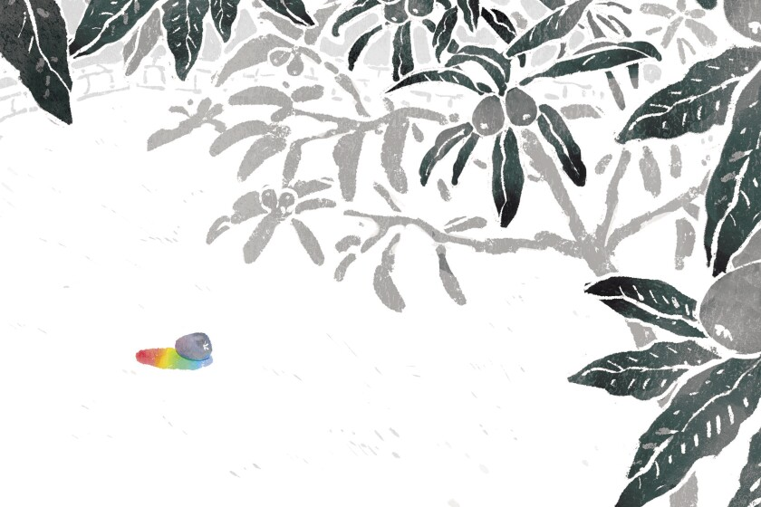 Illustration of a loquat tree rising up above a single loquat casting a rainbow shadow.