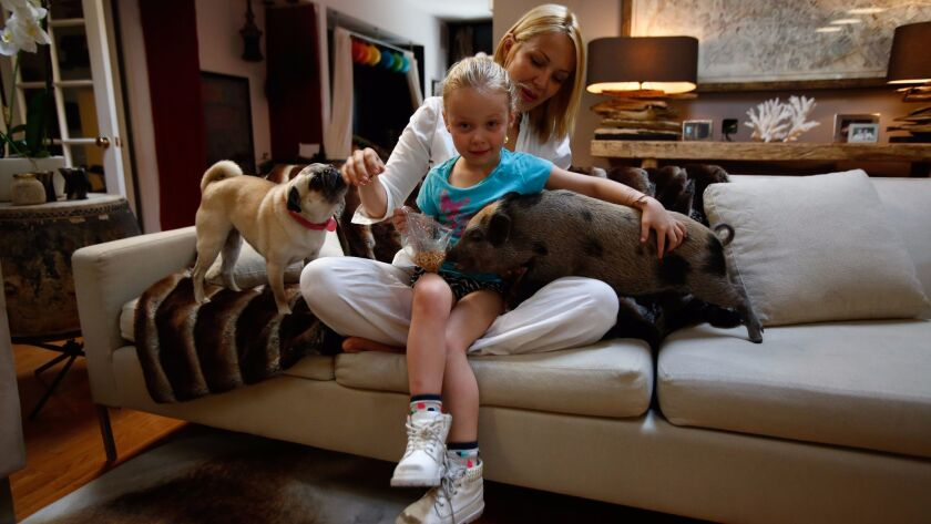 Hollywood stylist Tara Swennen and her daughter, Jordan, 5, with their pig Sprinkles and pug Pepper