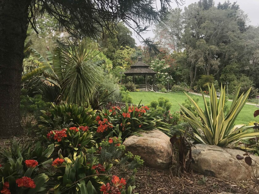 The San Diego Botanic Garden is set to re-open to the public this week.
