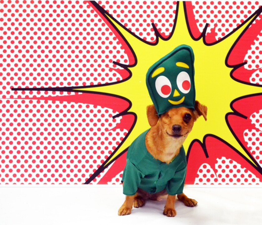 A dog dressed up as Gumby.