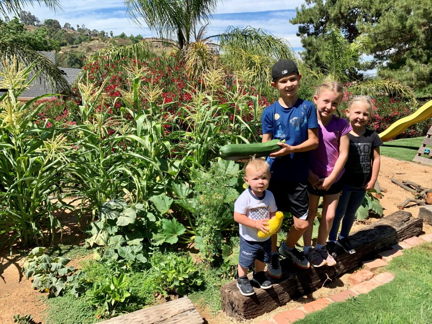 The Moss family kids proudly display one of their veggies. Left to right are Dallas, 1.5; Carson , 10; Lila, 7; Bailey, 5.