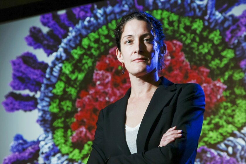 Rommie Amaro, associate professor at UCSD, stands in from of a 3D model image of an influenza virus made with structural date from researchers, on Friday in San Diego, California.