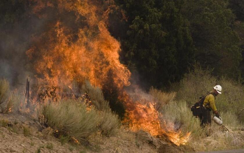 El incendio forestal que desde el viernes azota al noreste de Arizona ha aumentado el área a más de 8.623 acres (33 kilómetros cuadrados), en comparación con los 8.000 acres que abarcaba el domingo, por lo que la Oficina del Alguacil del Condado de Coconino ordenó hoy evacuar algunas comunidades cercanas al pueblo de Payson. EFE/Archivo