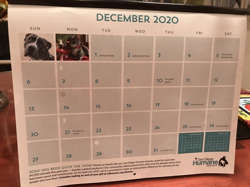 Inga's social calendar for this month is empty, despite the holidays, thanks to the COVID-19 pandemic.