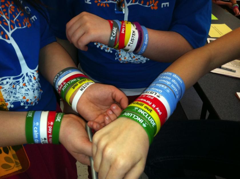 Roots Program wristbands