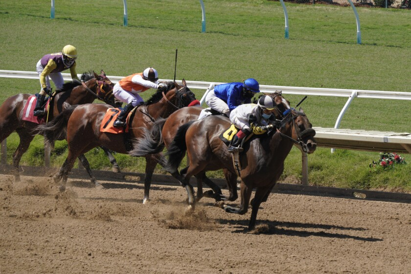 Dynamic Duo makes a run from the back on the final stretch at Del Mar Race Track.