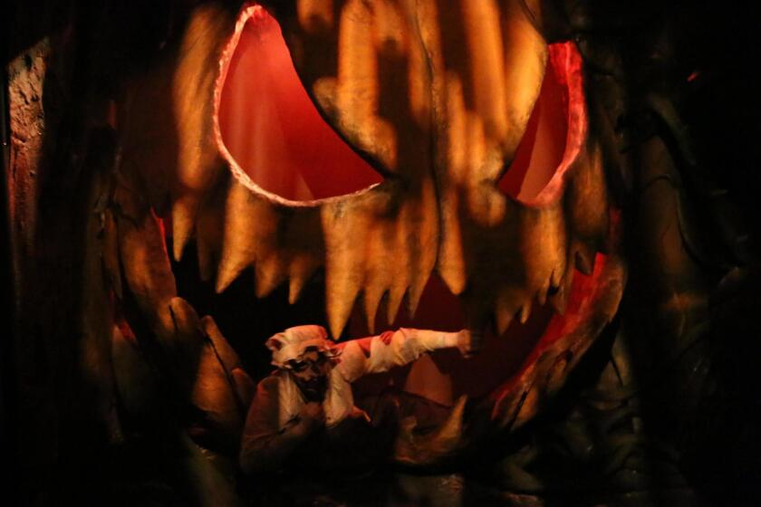 The 'Pumpkin Eater' maze is a must-see experience at Knott's Scary Farm, as it places guests in twisted, scary and visually stunning environments 'inside' a giant pumpkin; inspired by the classic 'Peter Peter Pumpkin Eater' nursery rhyme.