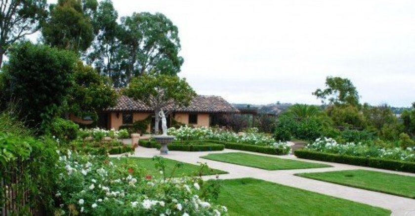 The strategic use of shrubbery and trees can make views even more impressive while adding an essential element of privacy. (Nature Designs - Renovation Landscaping, Rancho Santa Fe)