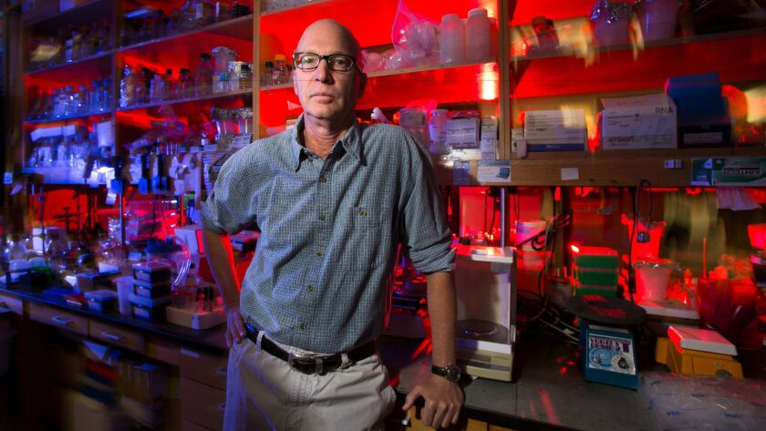 Kim Janda of The Scripps Research Institute has developed an opioid vaccine.