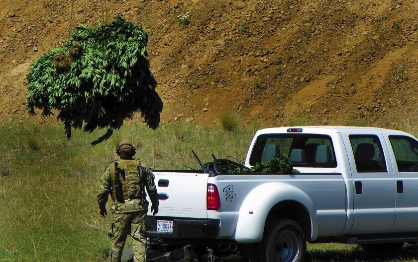 Yakama tribe just says no to Washington state's legal pot market