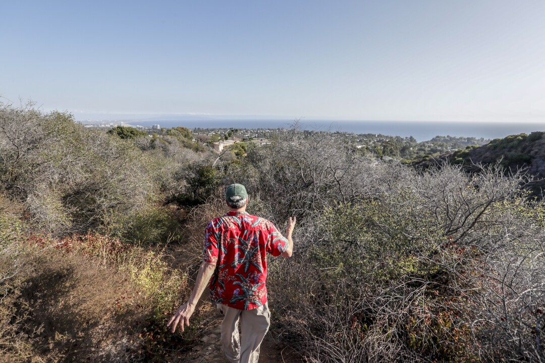 Steve Yusi walks a dense trail of brush located a few hundred yards from his home.