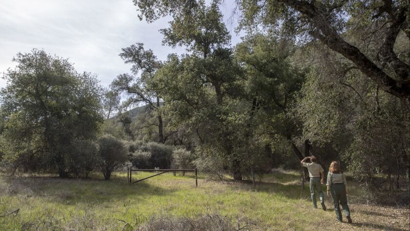 Biologists walk through former grazing land in the Los Padres National Forest, Calif. on April 3, 2018.