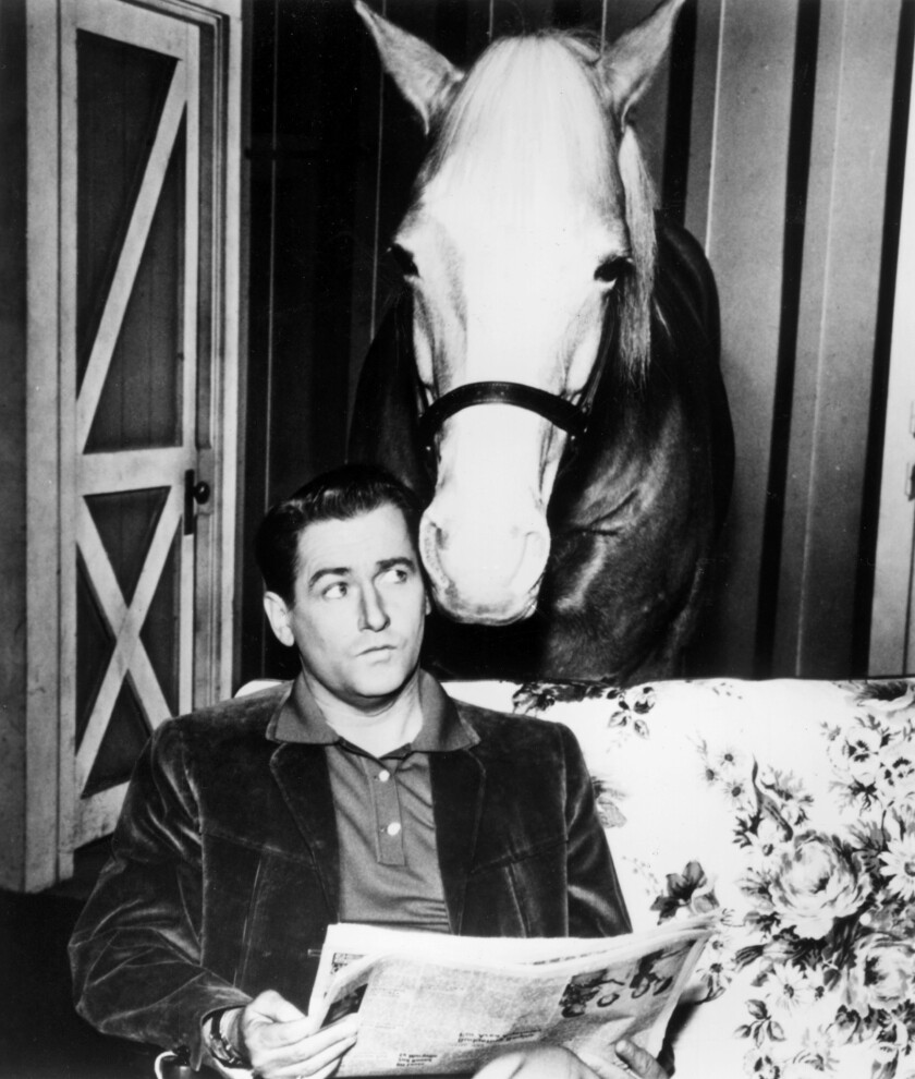 """Alan Young in """"Mister Ed."""""""