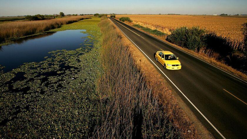 A levee road in the Sacramento-San Joaquin Delta.