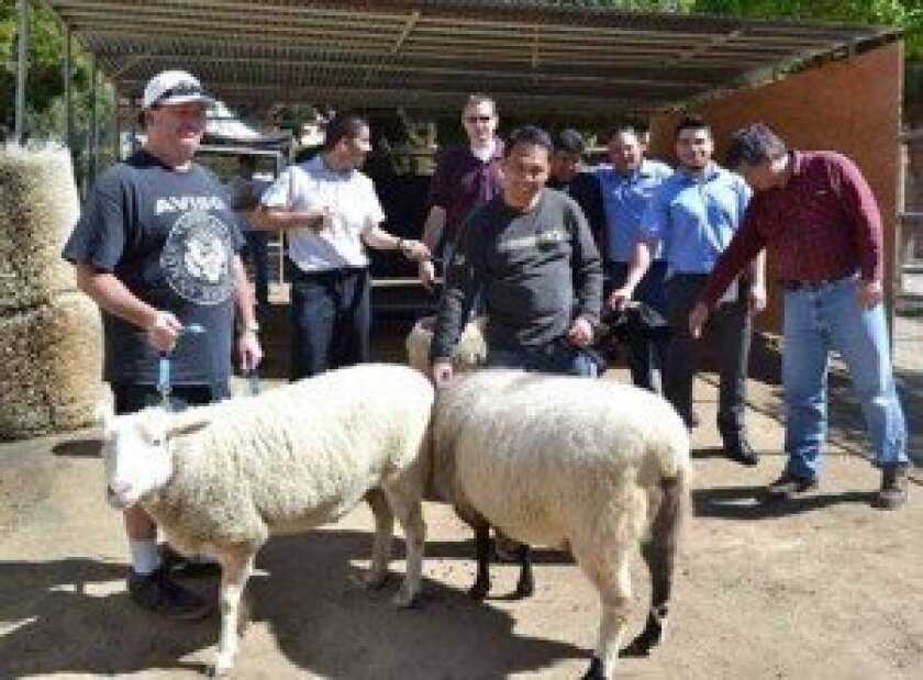 Thirty managers and assistant managers from local Residence Inns by Marriott delighted the staff and critters at Helen Woodward Animal Center on March 11 with an overhaul to a number of structural amenities in need of repair.