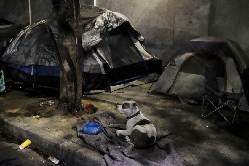 A homeless encampment on Broadway Place