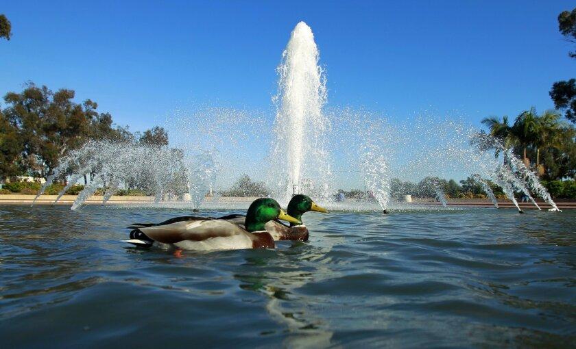 Bea Evenson Fountain at Balboa Park [U-T file]