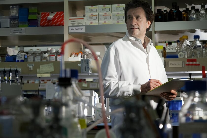 Klaus Ley in his lab at the La Jolla Institute for Allergy & Immunology. / photo by Nelvin C. Cepeda * U-T San Diego