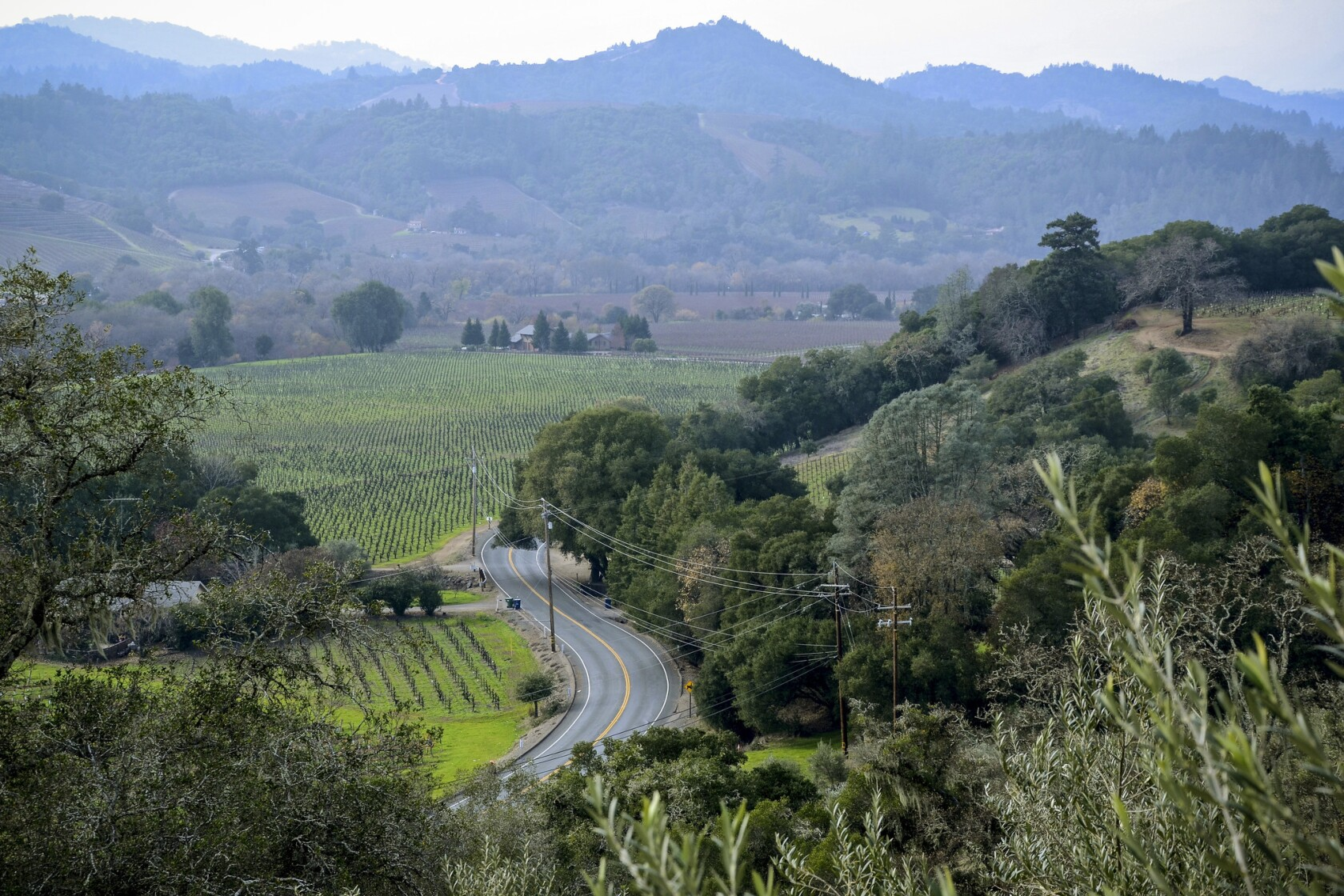 After the fires, the road back to Napa and Sonoma counties