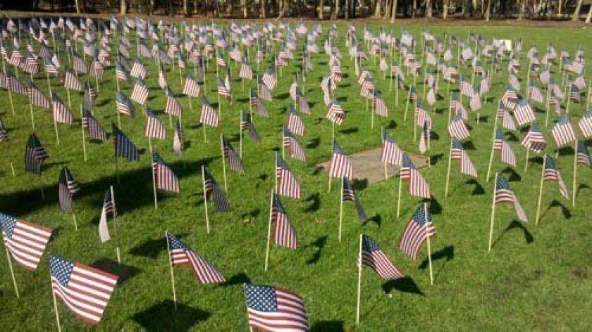 Flags fill a grass area near UCSD's Library Walk. Photo: Christine E. Clark/UCSD