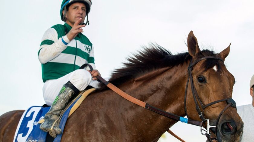 Jockey Victor Espinoza guides Accelerate to the winner's circle after their victory in the Grade II,