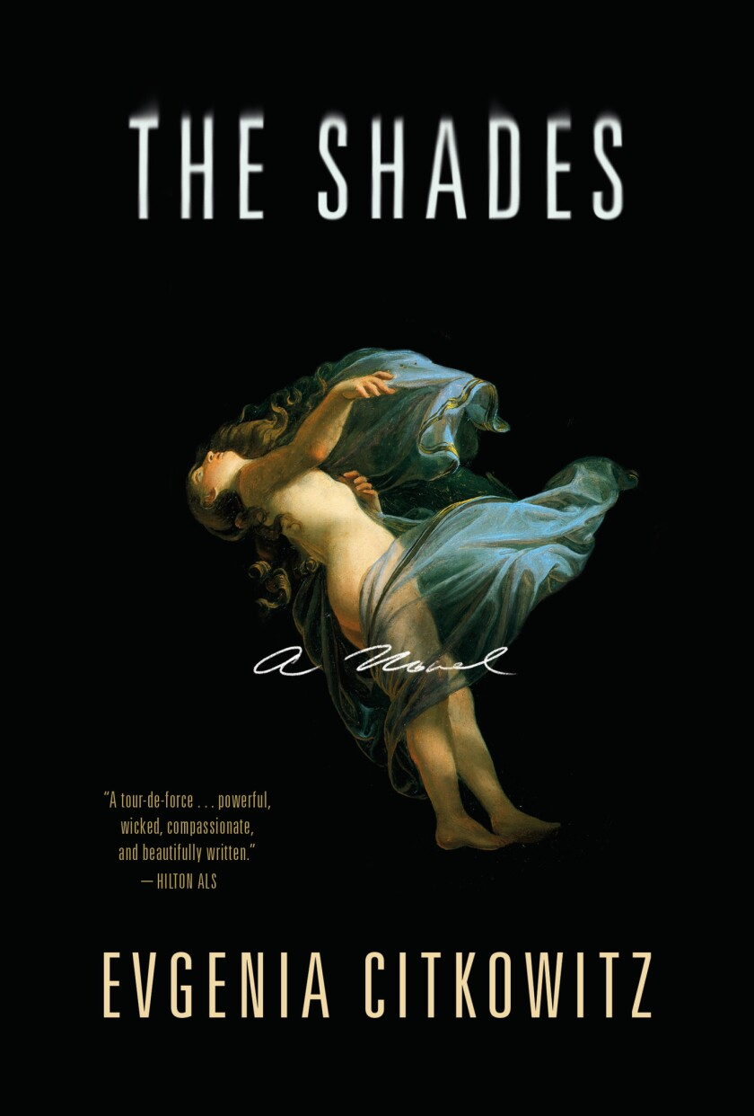Book jacket for THE SHADES by author Evgenia Citkowitz.