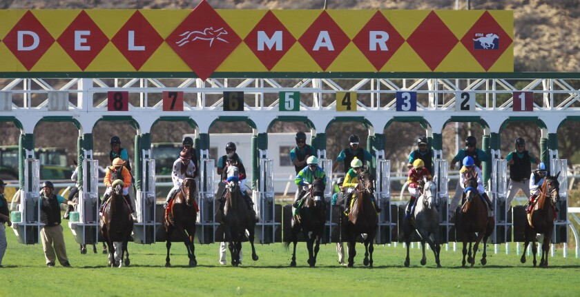 Horses come out of the gates at the start of the third race on opening day of the 2018 fall meet at the Del Mar racetrack in Del Mar on Friday.